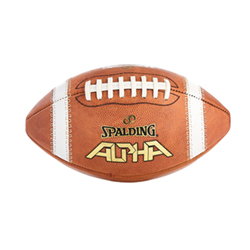 Spalding Alpha NJCAA Practice Football-Official Size - WC726888R ... 7923f5b82b7
